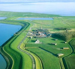 Image result for Dutch dike